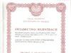 Certyfikat-drugi-wzór-przemysłowy-100x75 GŁÓWNA