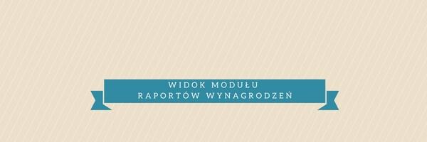 widok-modulu-raportow-wynagrodzen