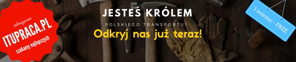 17-1024x215 119 mandatów na łączną kwotę 20200 zł po kontroli WITD w Białymstoku