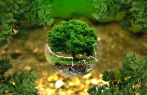 environmental-protection-326923_640-300x194 GŁÓWNA